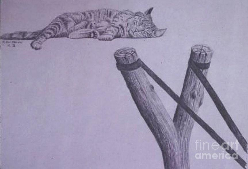 Cat Drawing - Peta Kitty by Dan Hausel