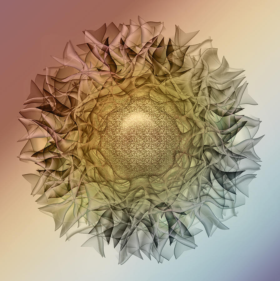 Flower Digital Art - Petaled5 by Andy Young