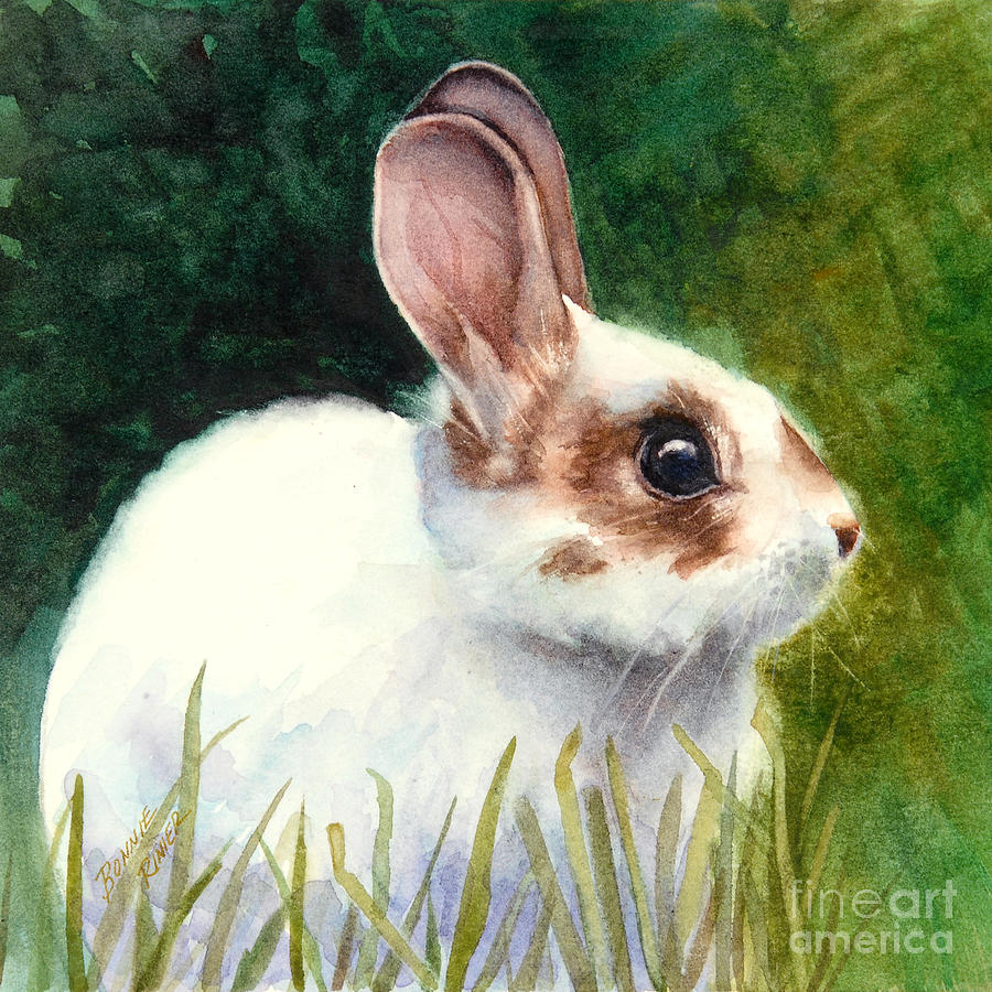 Rabbit Painting - Peter by Bonnie Rinier