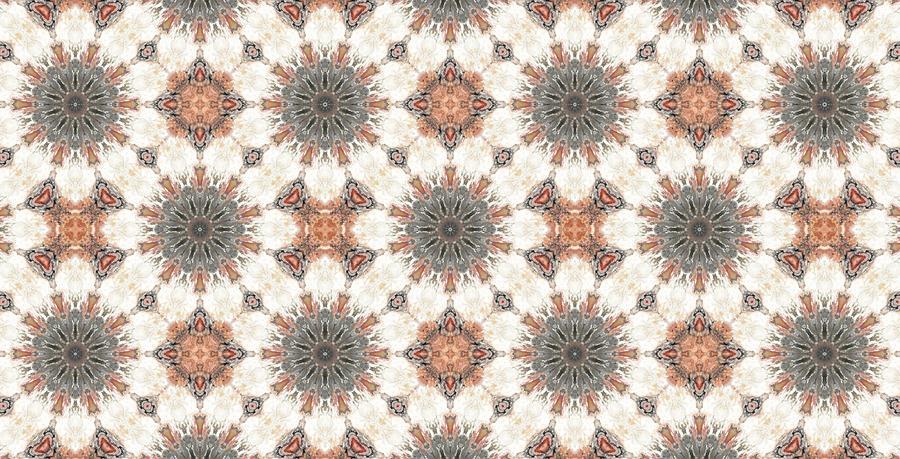 Kaleidoscope Photograph - Petrified Folk Tapestry by M E Cieplinski
