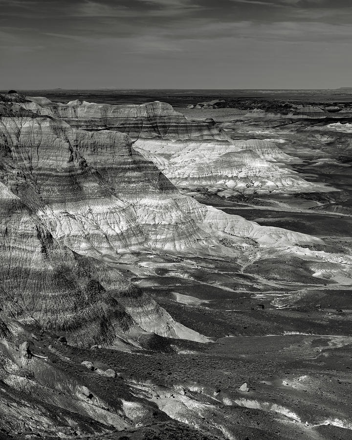 Petrified Forest Photograph - Petrified Forest Mesa by Joseph Smith