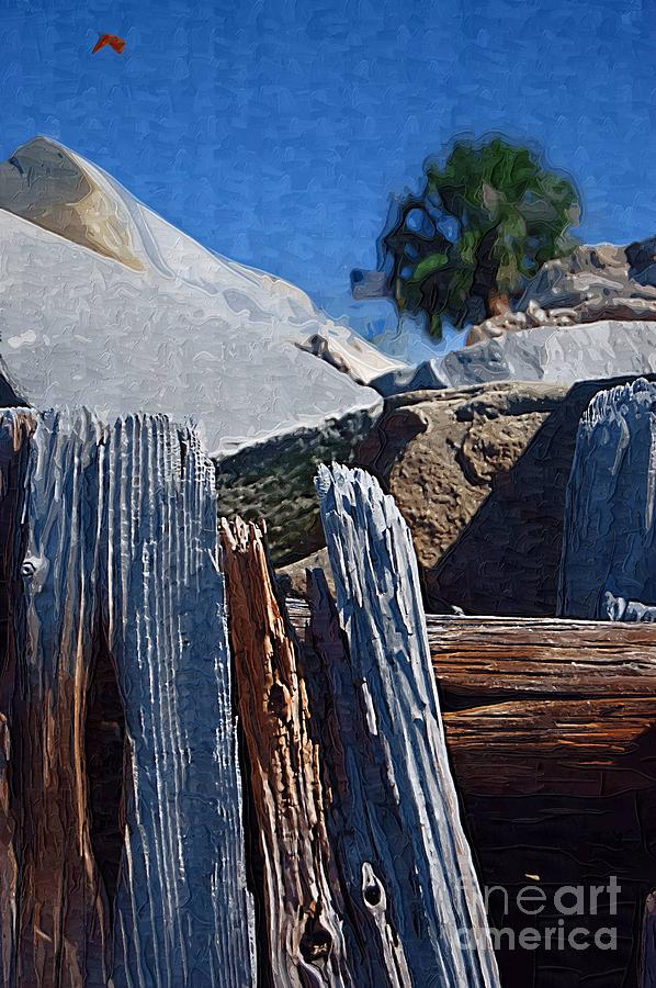 Petrified Wood Photograph - Petrified Wood by Donna Bentley
