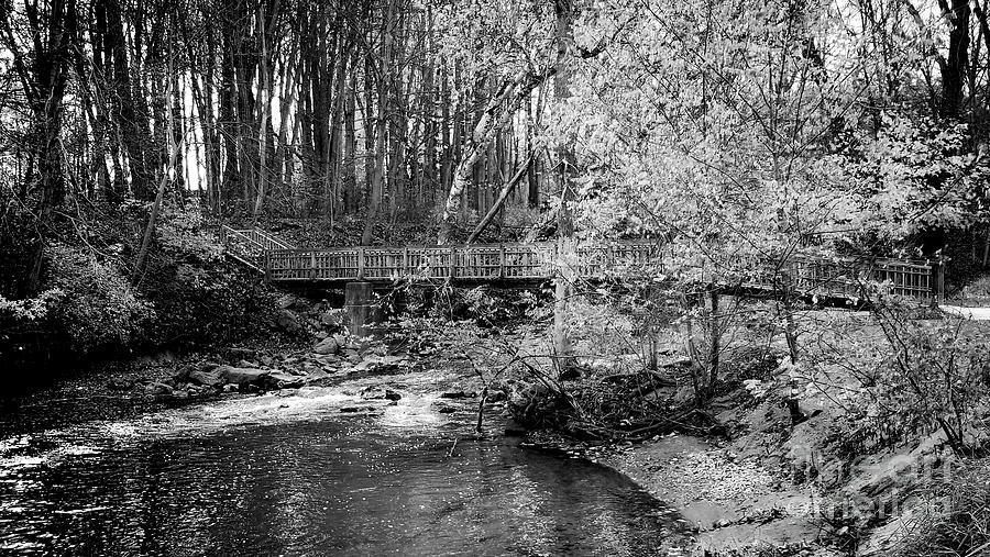 Samsung Photograph - Petrifying Springs Park Bridge  by Ricky L Jones