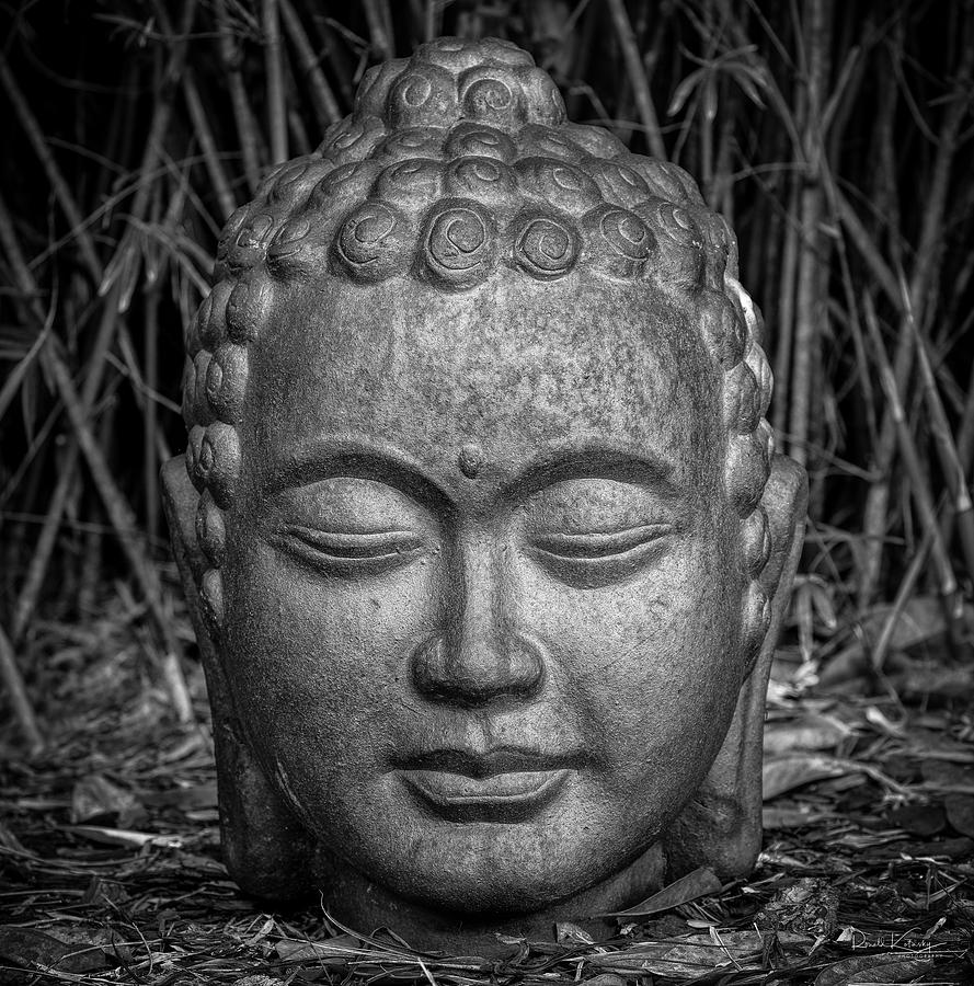 valrico buddhist personals Find meetups in valrico, florida about singles and meet people in your local community who share your interests start a new group  singles meetups in valrico here's a look at some singles meetups happening near valrico sign me up  buddhist market sunday 5 members going 10:00 am.