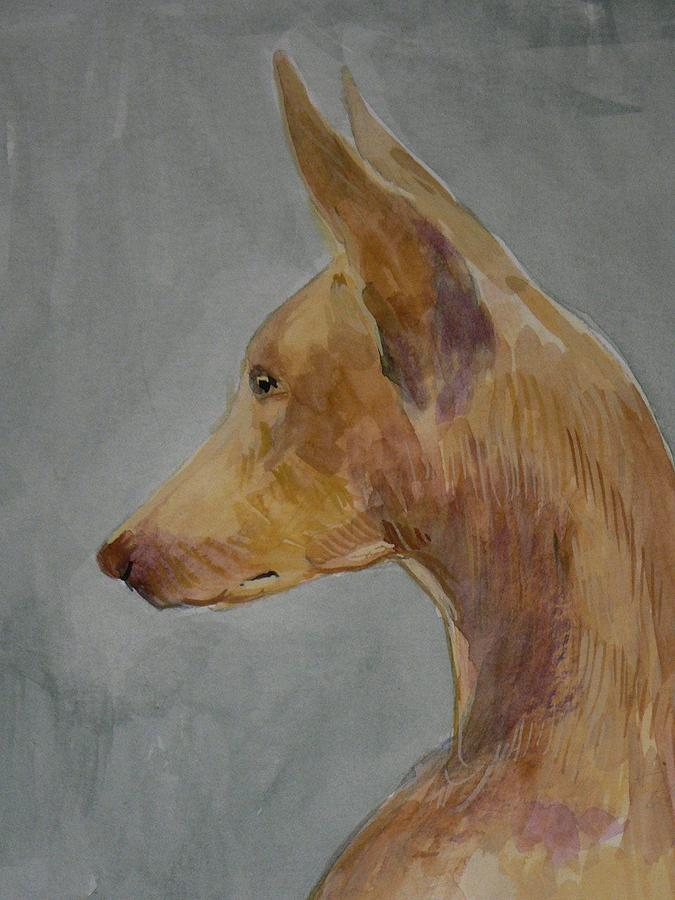 Dogs Painting - Pharaoh Hound Noah by Phillip Dimor