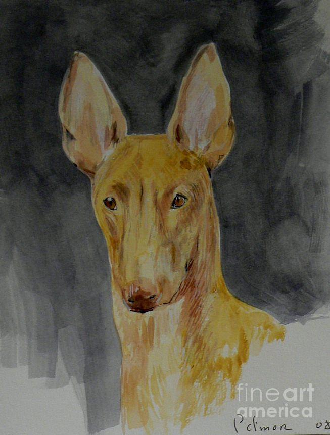 Dogs Painting - Pharoah Hound Akhnaten by Phillip Dimor