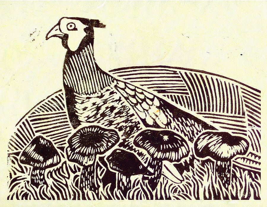 Pheasant Painting - Pheasant Amongst The Blewits by Becca Thorne