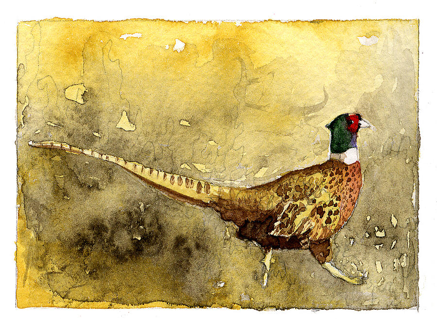 Male Painting - Pheasant by Eunice Olson