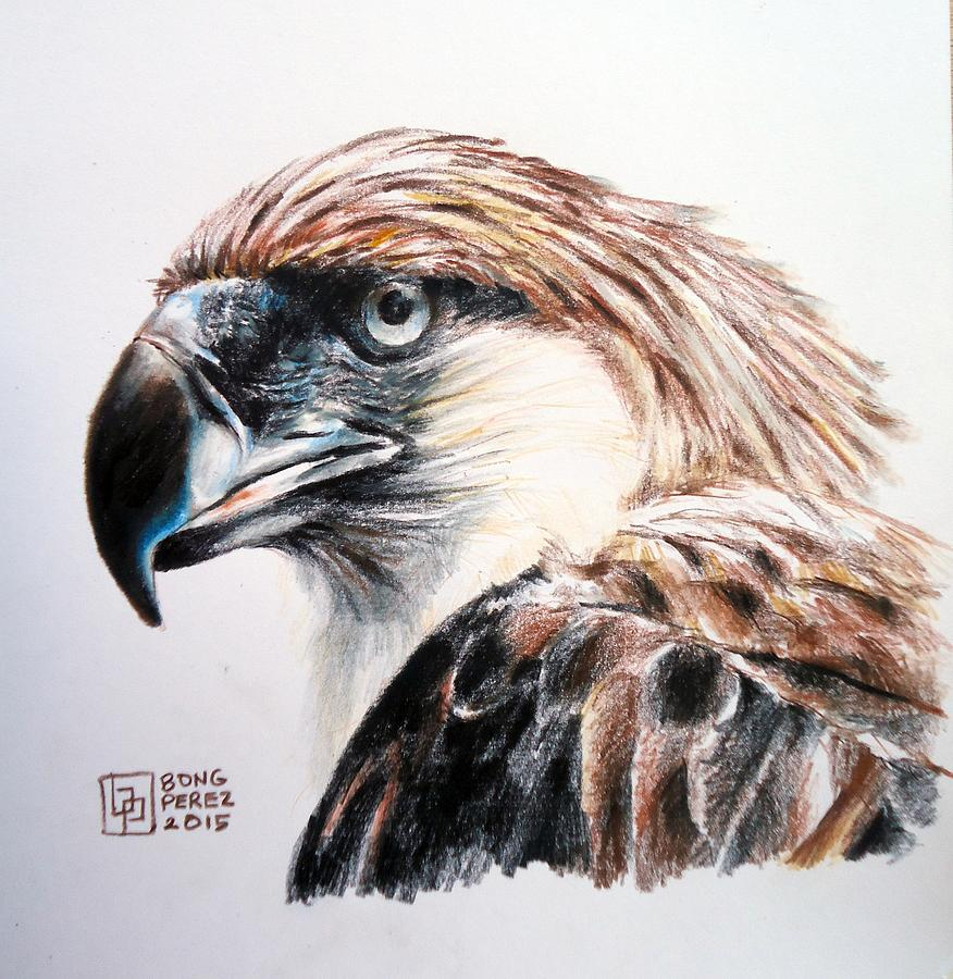 Philippine Eagle Painting By Bong Perez
