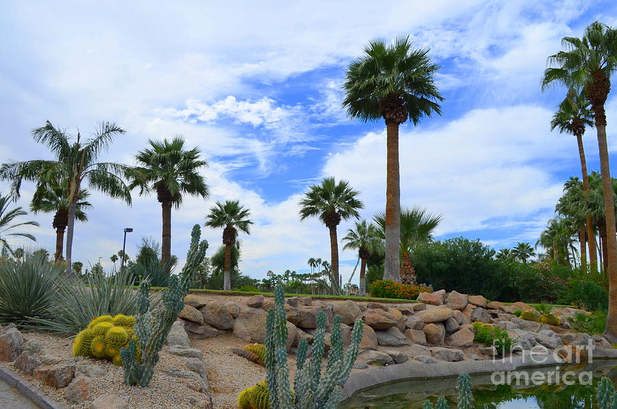 Phoenician Golf Course Series - 47 Photograph