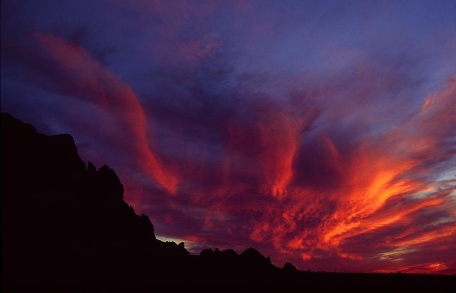 Arizona Photograph - Phoenix Risen by Randy Oberg