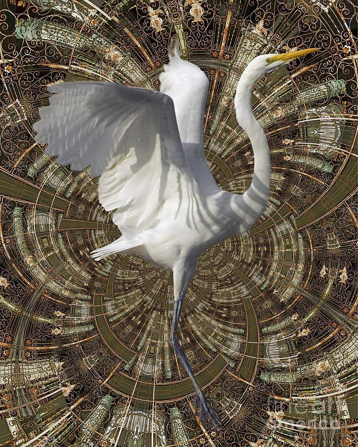 Bird Digital Art - Phoenix Rising by Chuck Brittenham