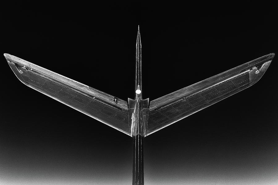 Phoenixski by Jay Beckman