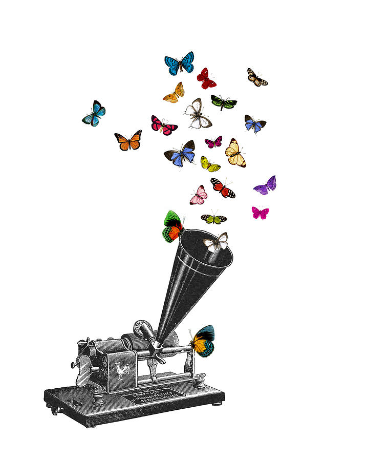 Phonograph Digital Art - Phonograph And Butterflies Print by Madame Memento