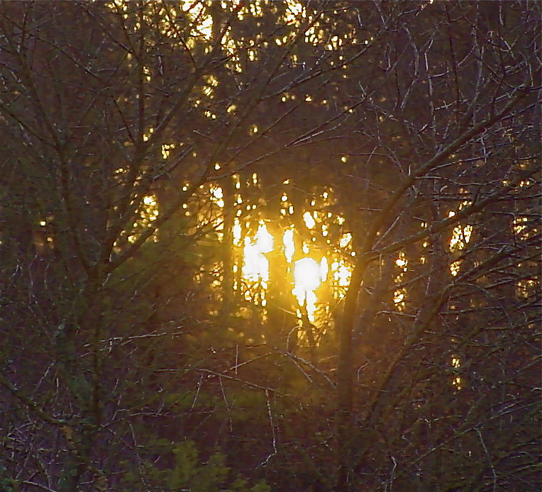 Photo Winter Solstice Dawn Photograph by Ray  Petersen