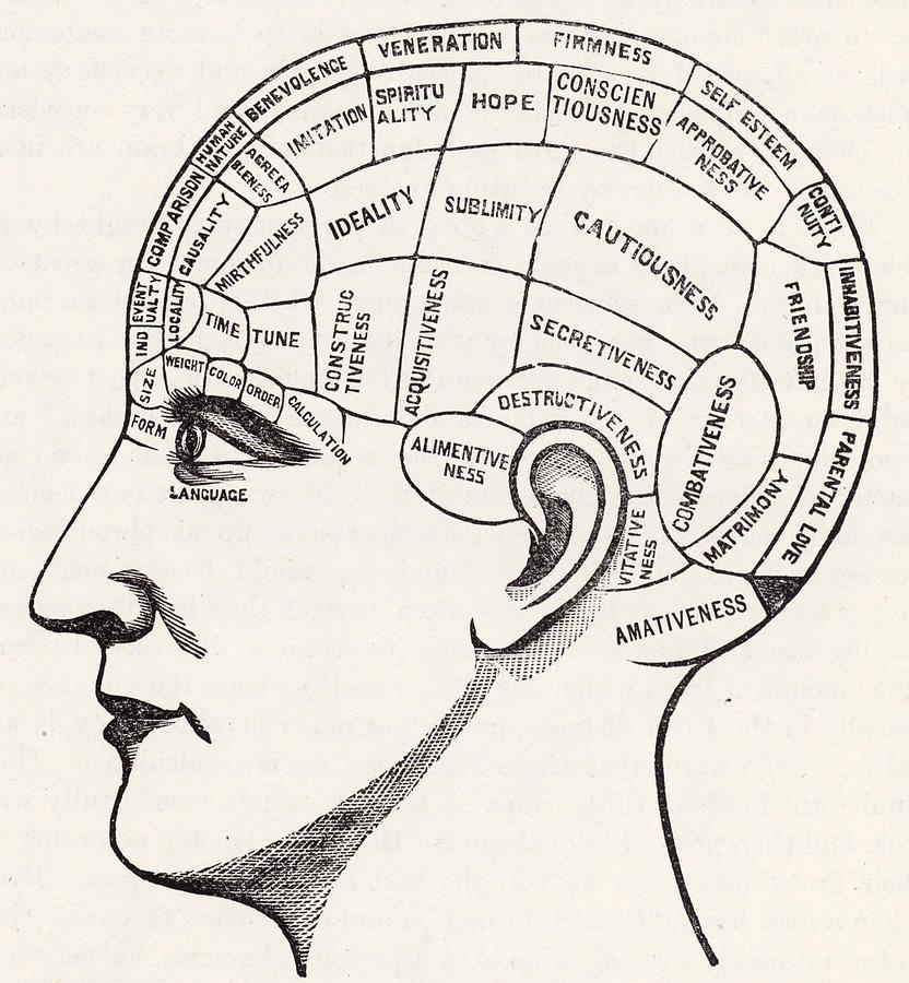 [Image: phrenology-english-school.jpg]