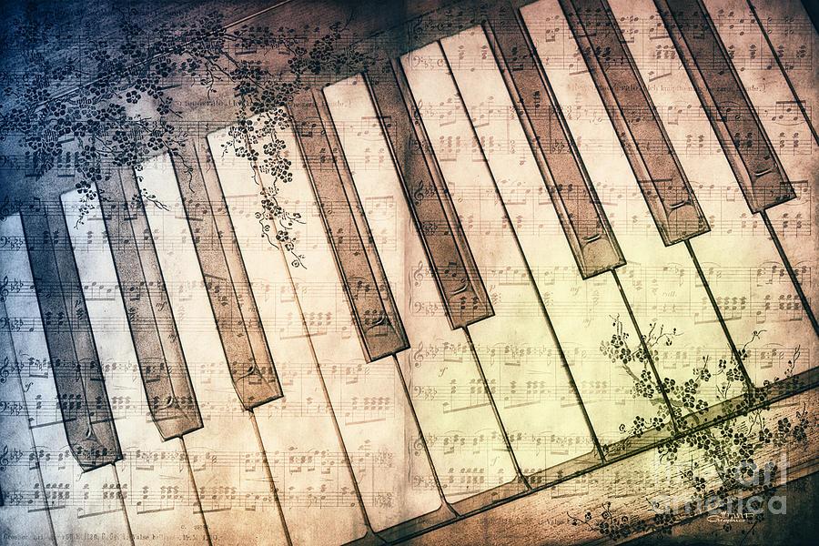 Photo Photograph - Piano Days by Jutta Maria Pusl