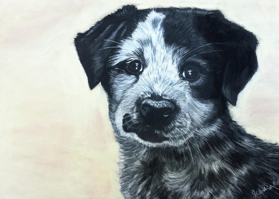 Dog Drawing - Pick Me by Jessica Kale
