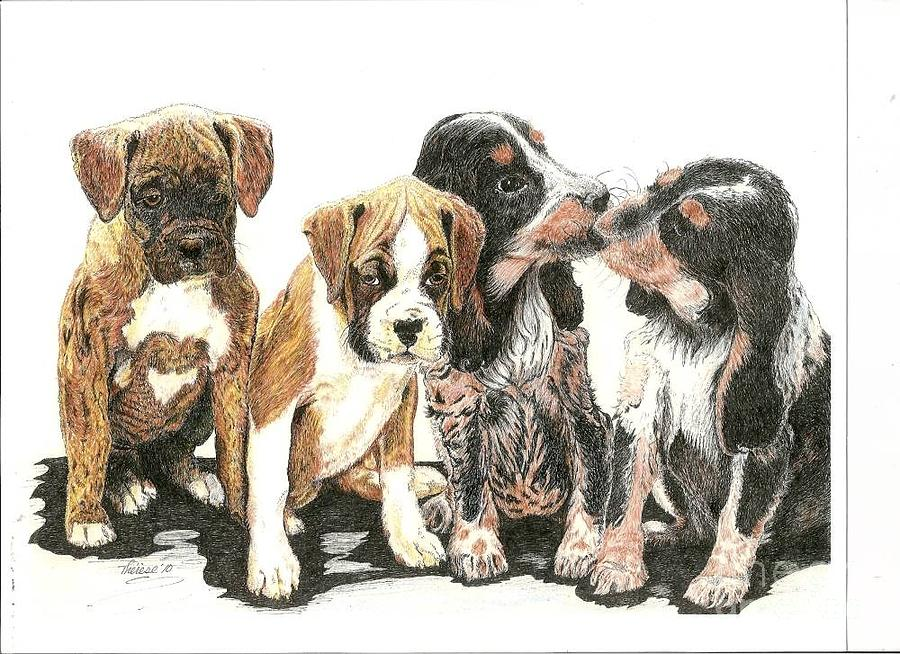 Puppies Drawing - Pick Of The Litter by Bill Hubbard