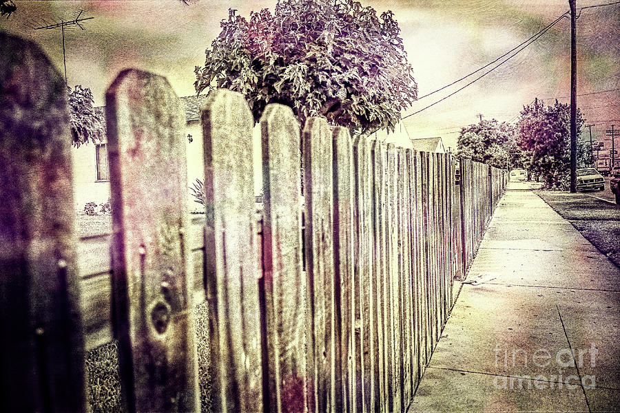 Picket Fence Along The Boulevard In Color Tones Photograph