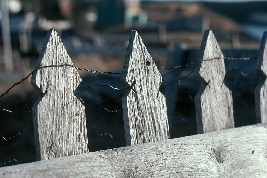 Fence Photograph - Picket Fence by Douglas Pike