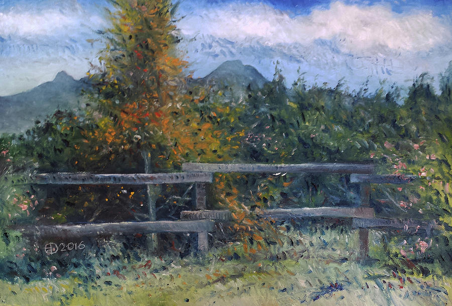 Impressionism Painting - Picket Fence Near Heidelberg Western Cape South Africa by Enver Larney