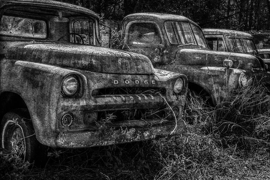 Pickup Line BW by Randy Walton