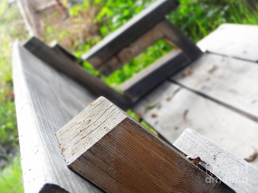 Wood Photograph - Picnic Bench by Korynn Neil
