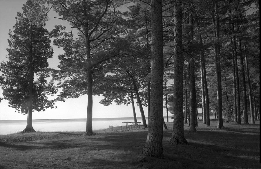 Black And White Photograph - Picnic Table View-newport State Park by Stephen Mack