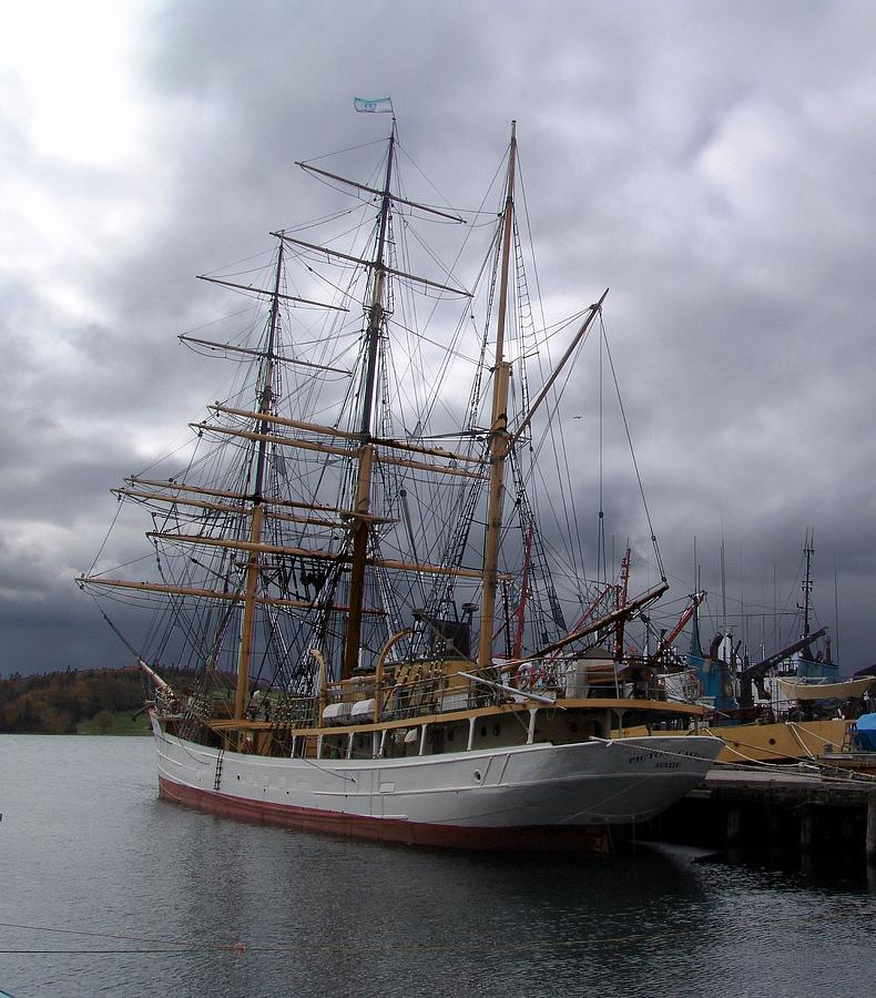Tall Ship Photograph - Picton Castle In Lunenburg by George Cousins