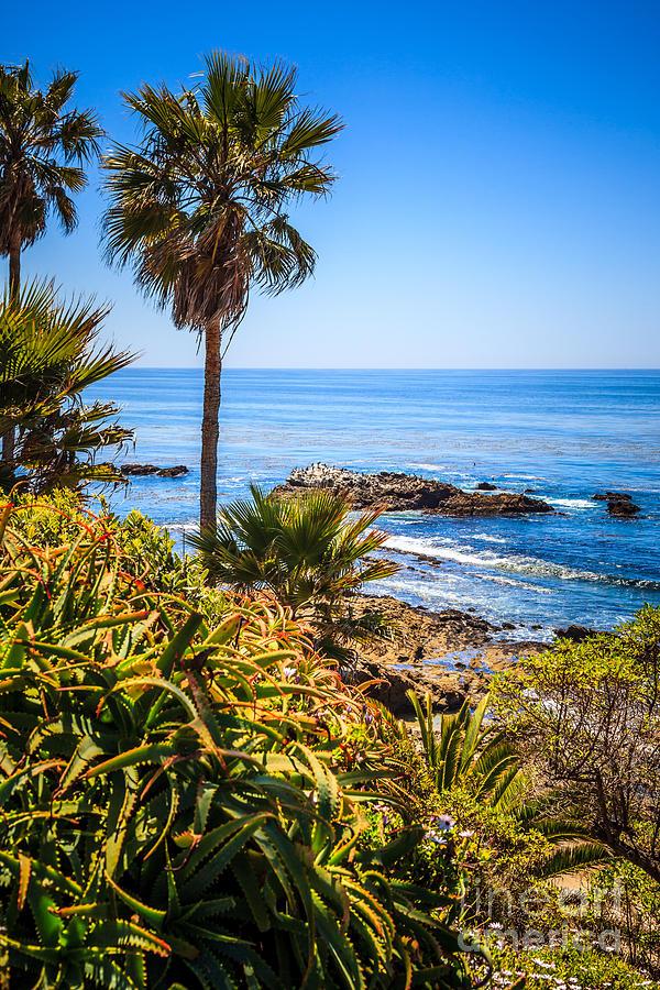 Picture Of Laguna Beach California Photograph