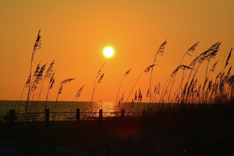 Sunset Photograph - Picture Perfect Sunset by Tamra Lockard