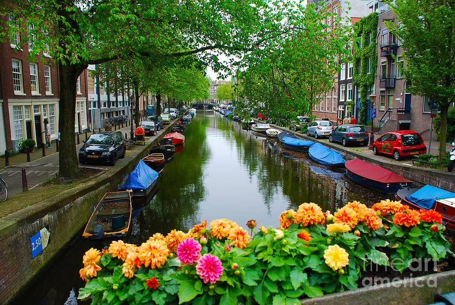 Picturesque View Amsterdam Holland Canal Flowers