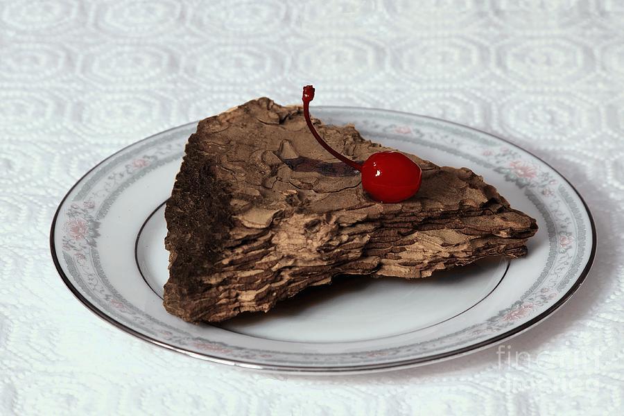 Imitation Photograph - Piece Of Pine Cake With Cherry. by Viktor Savchenko