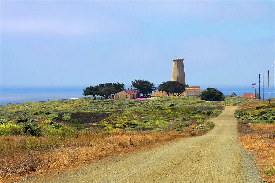 Piedras Blancas Light Station Photograph - Piedras Blancas Historic Light Station - Outstanding Natural Area Central California by Christine Till