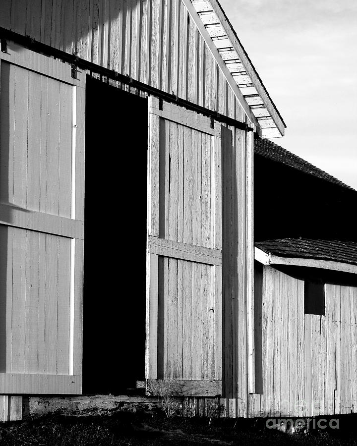 Black And White Photograph - Pierce Point Ranch 16 . Bw by Wingsdomain Art and Photography