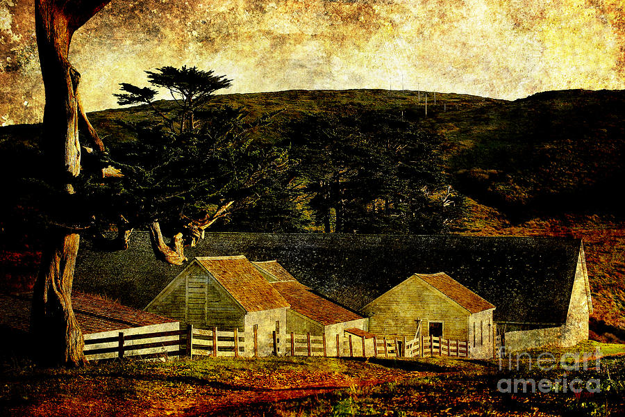 Pierce Point Ranch Photograph - Pierce Point Ranch 18 . Texture by Wingsdomain Art and Photography