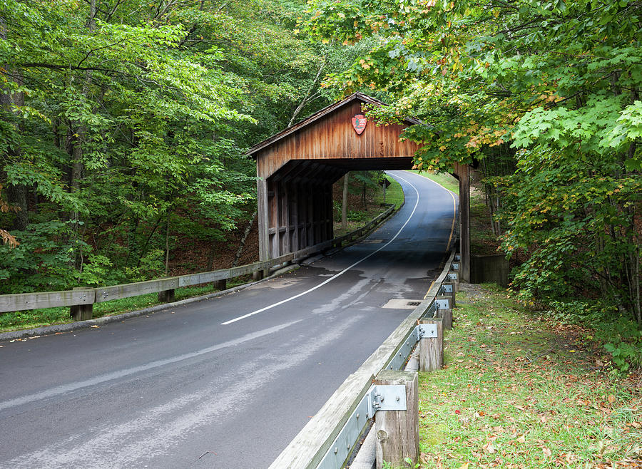 Pierce Stocking Covered Bridge by Fran Riley
