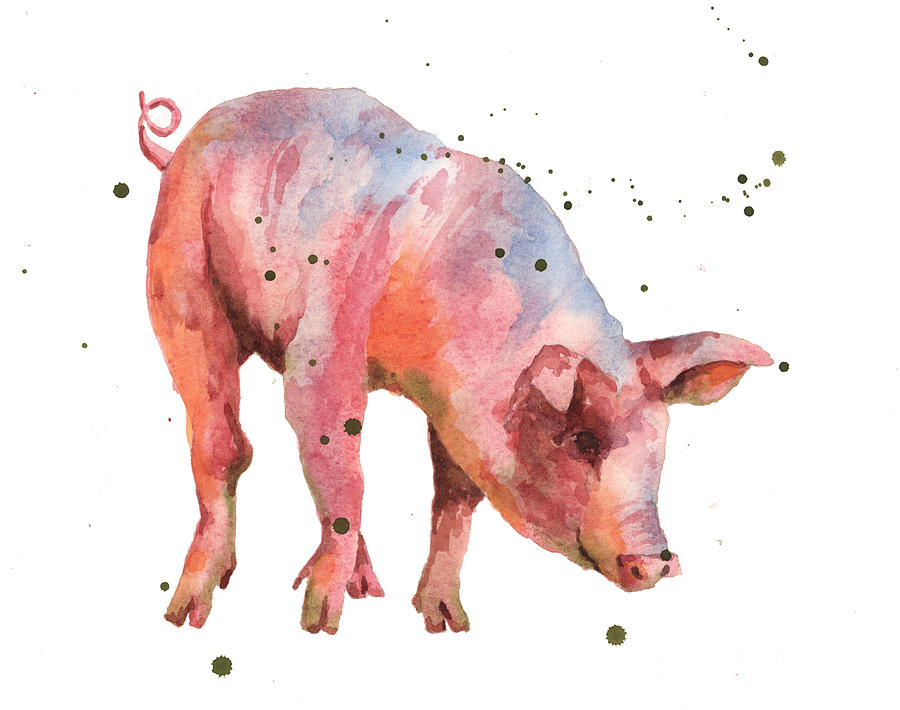 Pig Painting - Pig Painting by Alison Fennell