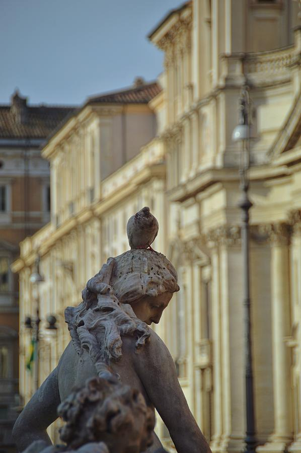 Italy Photograph - Pigeon Parking by JAMART Photography