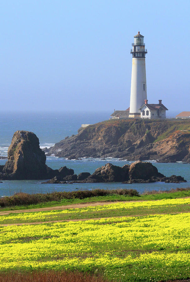 Pigeon Point Photograph - Pigeon Point by Craig Sanders
