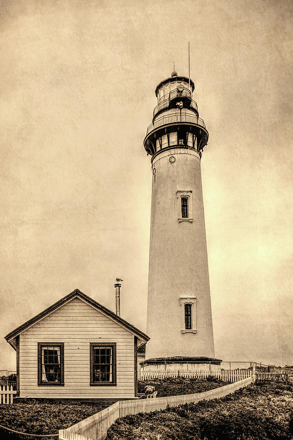 Pigeon Point Light Station Pescadero California by David Smith