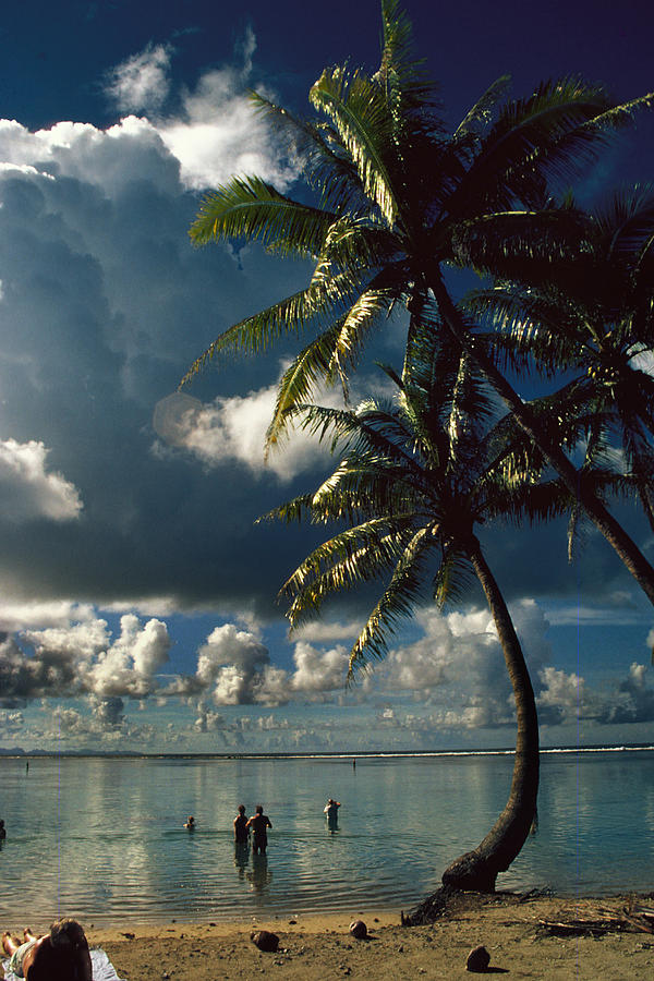Pigeon Point On Tobago Photograph