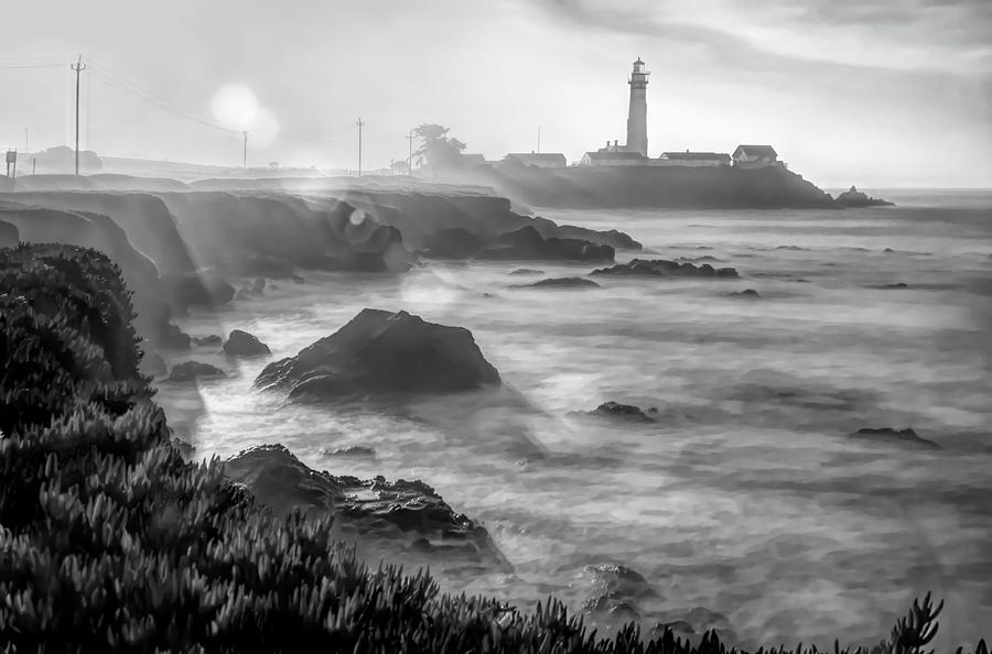 Pigeon Point Rocky Shore by Wes Jimerson