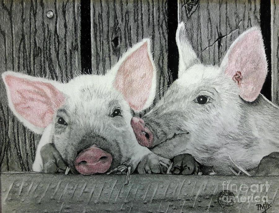 Piglets by Terri Mills