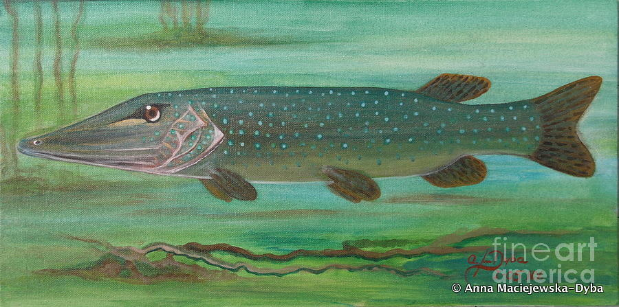 Folkartanna Painting - Pike by Anna Folkartanna Maciejewska-Dyba