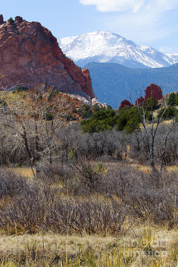 Pikes Peak At Garden Of The Gods Photograph