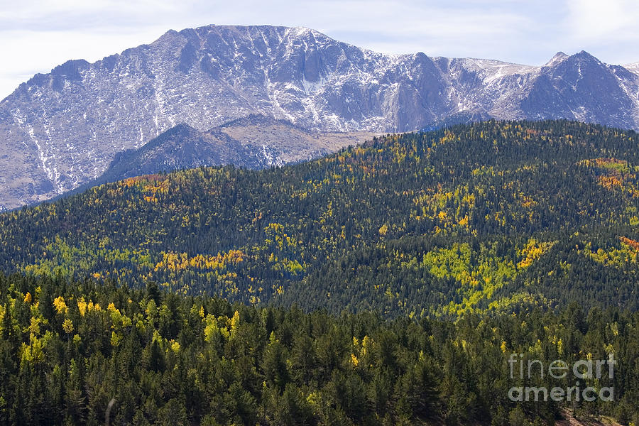 Pikes Peak With Autumn Aspen Color Photograph