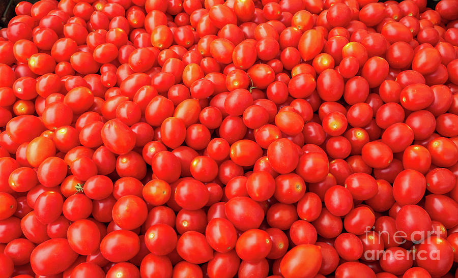Boxes Photograph - Pile Of Small Tomatos For Sale In Market by PorqueNo Studios
