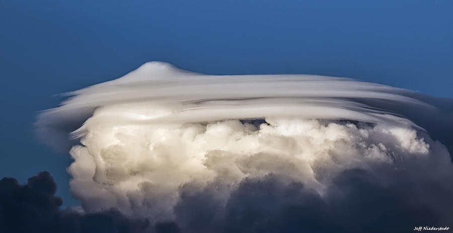Pileus by Jeff Niederstadt